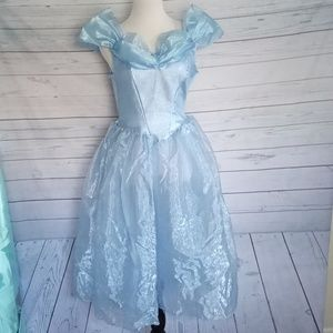 Disney Cinderella dress up dress size XL      0043